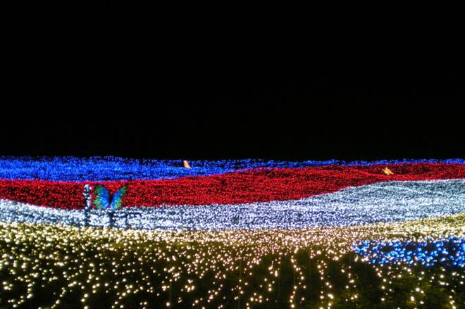 Фестивали февраля: цветы из льда в Японии