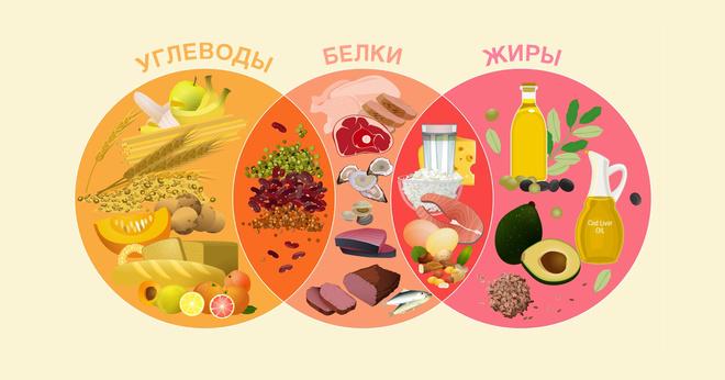 8 правил сбалансированного питания