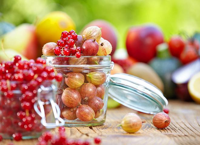 Крыжовник: заготовки на зиму из ягод