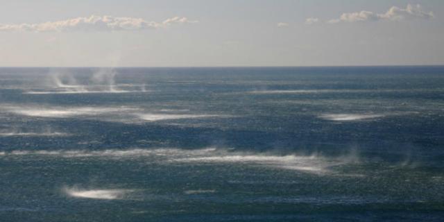 ТОП-10 найбільш незвичайних природних явищ