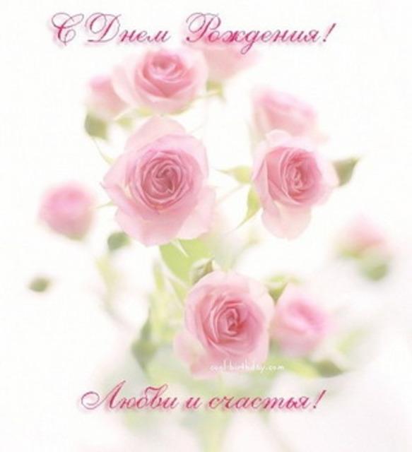 Розы  профессиональные фото высокого разрешения