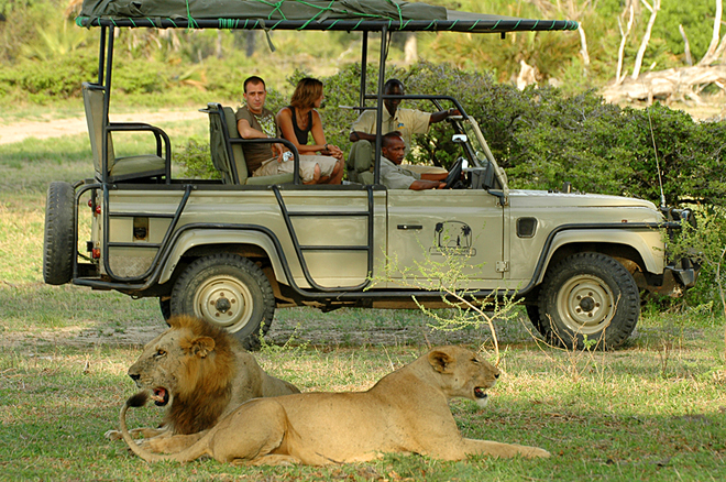 Опасные места. Serengeti National Park, Танзания
