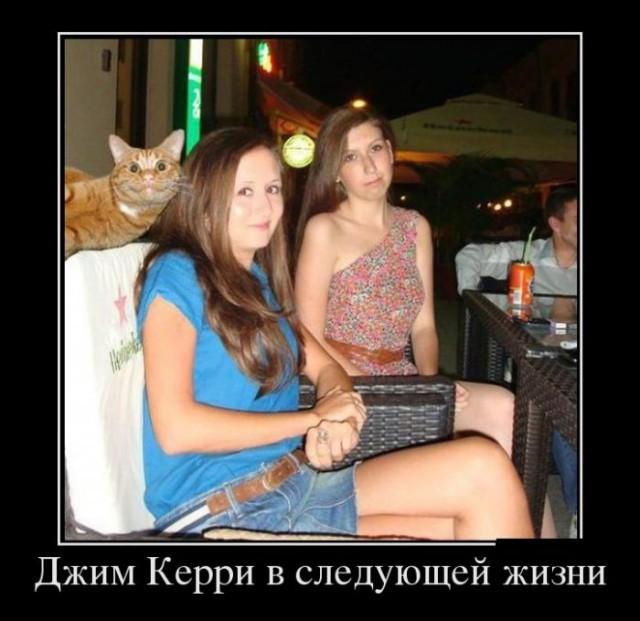 Демотиваторы с животными