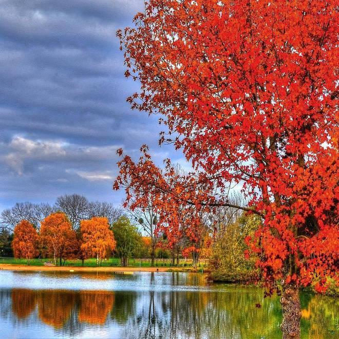 Путешествие по осенней Европе: самые красивые пейзажи этой осени