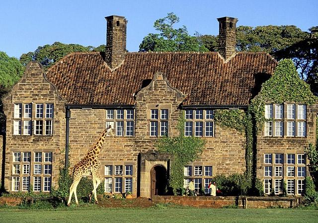 Незвичайний готель Маєток жирафа