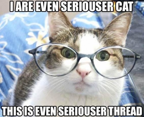 Серьезный кот- серьезный тред (ЛОЛ)