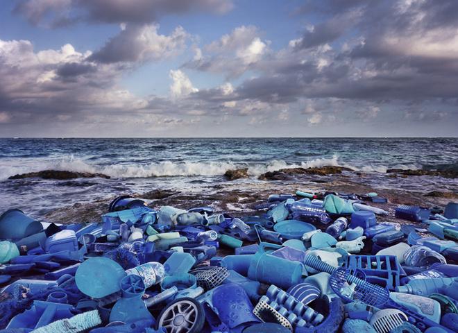 Мусорный арт: художник создаёт инсталляции из мусора, найденного на берегу океана
