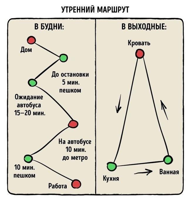 10 картинок-диаграмм про нашу жизнь