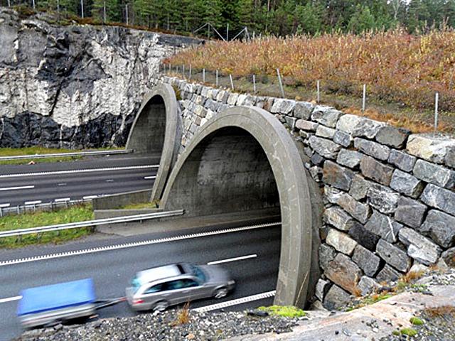 Мосты для животных: Голландия
