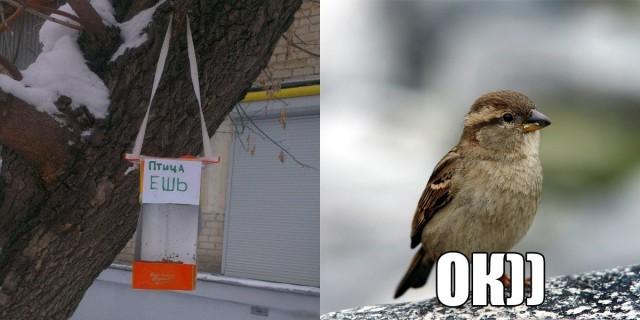 Оригинальный скворечник для птичек