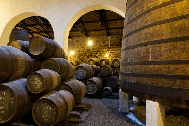 Винний фестиваль у Португалії 2015 року: насолоджуйся  напоєм богів і потанцюй до упаду