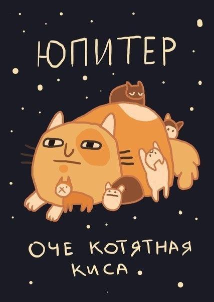 Картинки космические котики