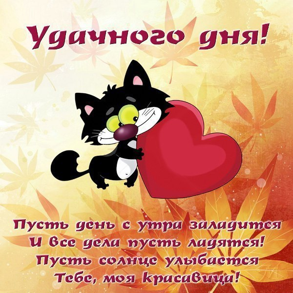 Удачного дня!