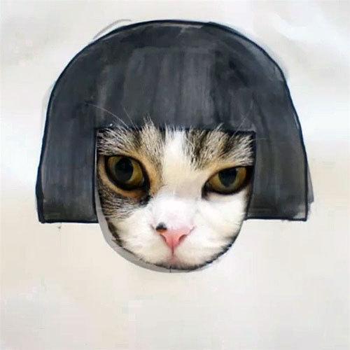 ТОП 5 самых звездных котов Интернета
