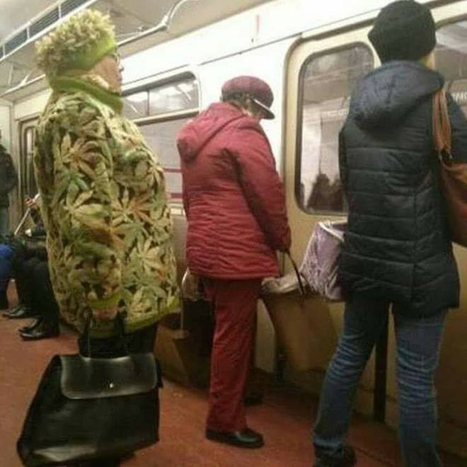 Марихуана прикол фото желтый лист марихуаны пачка лсд