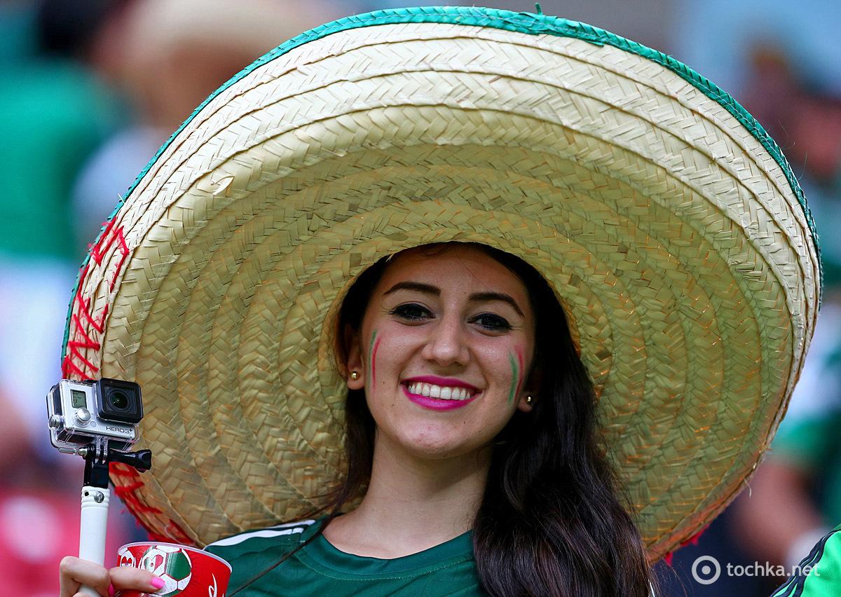 эмбрионов красивые мексиканцы фото бромелией