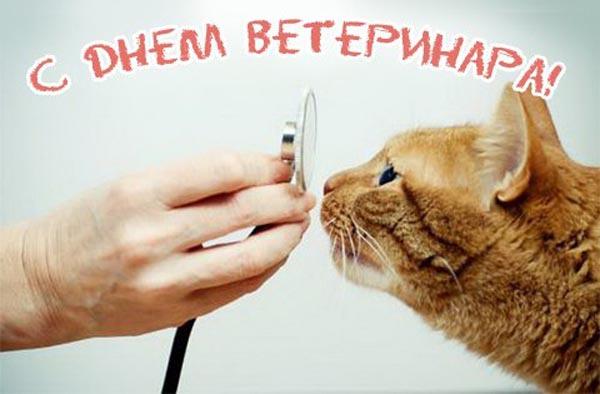 С Днем ветеринара