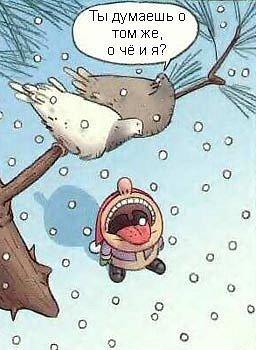 Коварные голуби