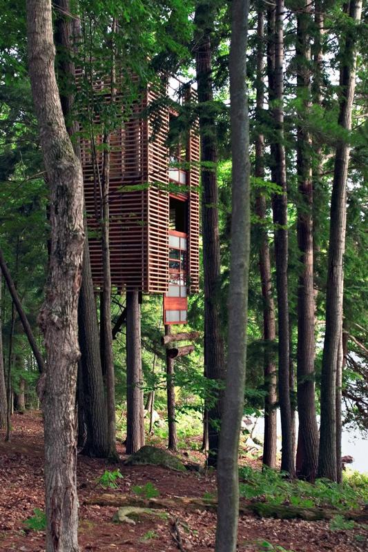 Оригінальні житла: самі незвичайні будинки на деревах
