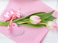 Нежный букет тюльпанов HD