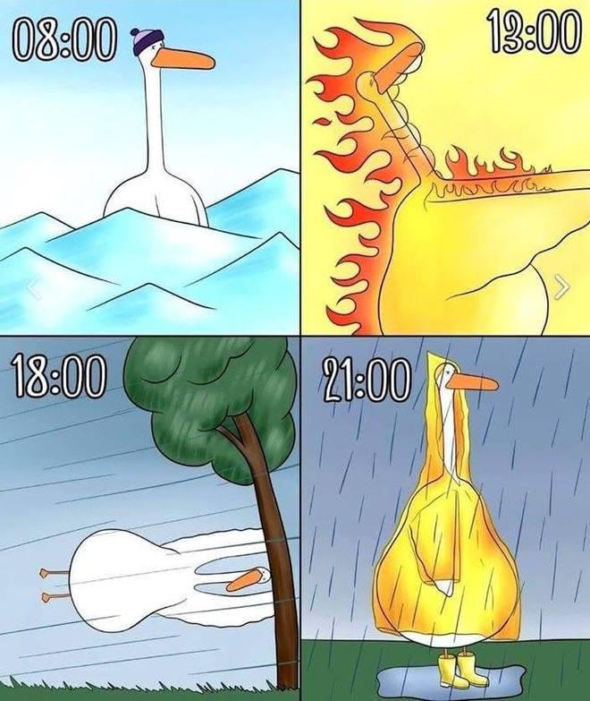Погода летом 2020