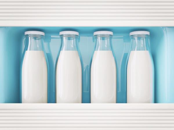 Молоко. Корова