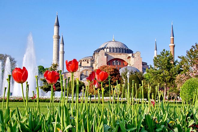 Міжнародний фестиваль тюльпанів у Стамбулі