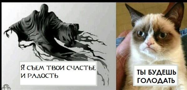 Ты будешь голодать)
