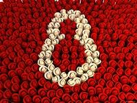 Ковер роз на 8 марта