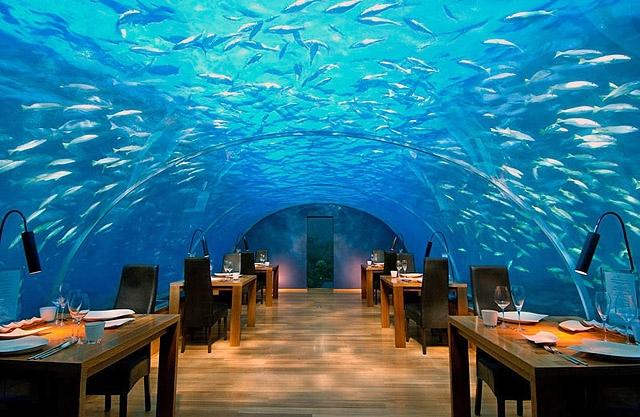 Гурман-тур: необычные рестораны: Ithaa, Мальдивы