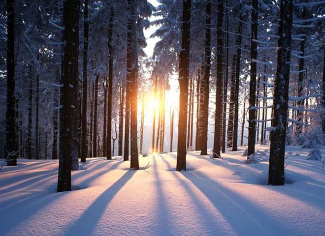 День зимового сонцестояння