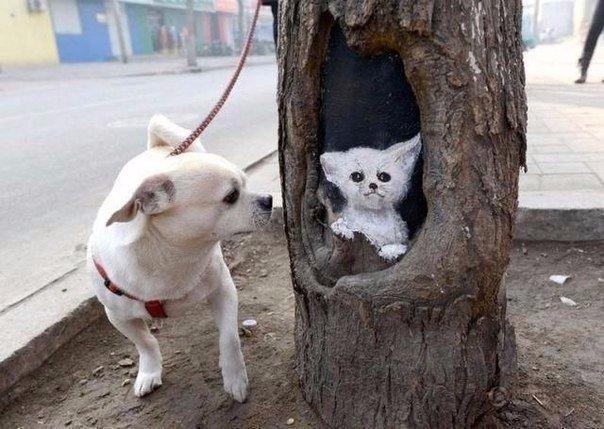 Отверстия на стволах деревьев вместо холста