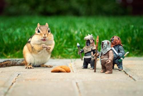 Бурундуки со Звезными войнами и Лего