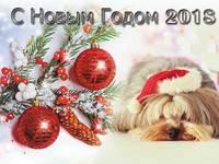 Мимишные открытки на год собаки 2018