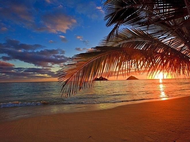 На пляже в гаваях 69