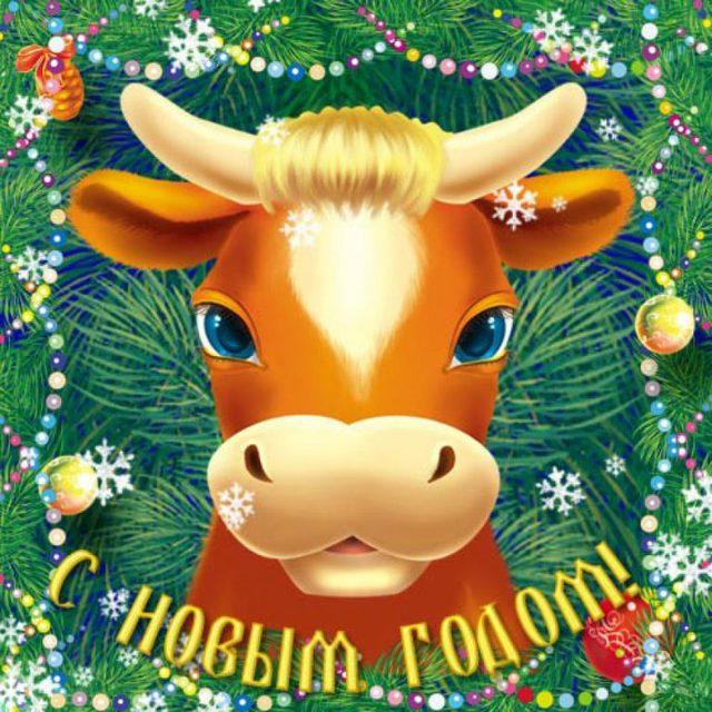 Милые открытки на Новый год быка 2021