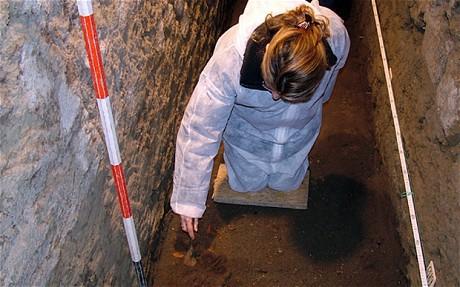 Британские ученые исследовали 10 тонн древнеримских фекалий