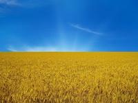 Природный флаг Украины