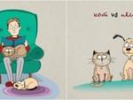 Чем коты отличаются от собак