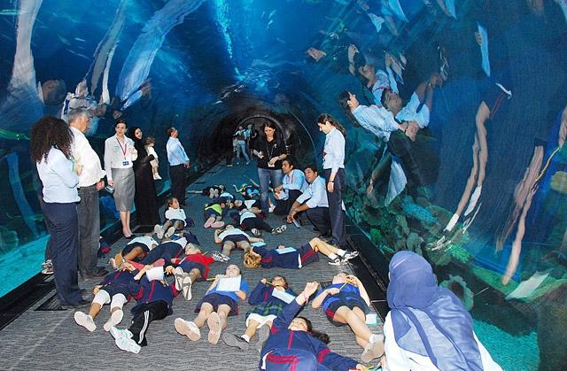 Океанаріум світу: Dubai Aquarium & Discovery Centre