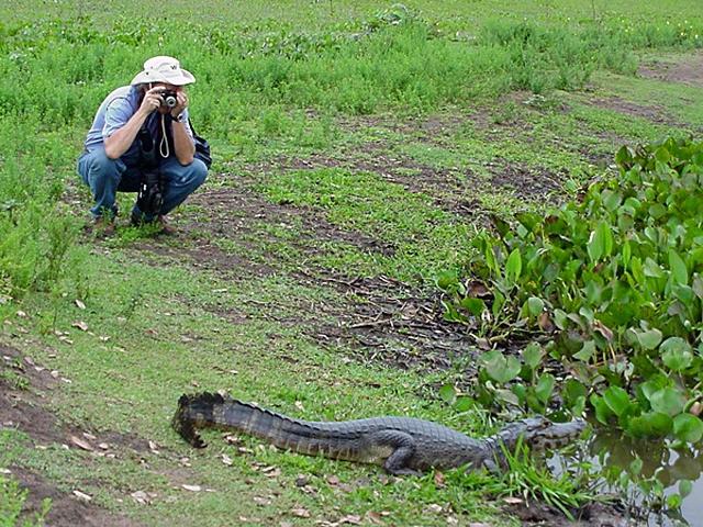 Сафари-туризм: Бразильское сафари