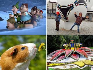 Выходные с детьми: куда пойти в Киеве 13-14 сентября