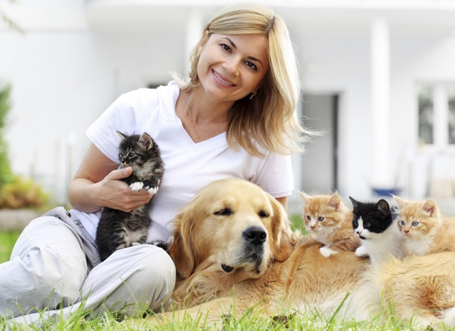 Розумні гаджети для тварин