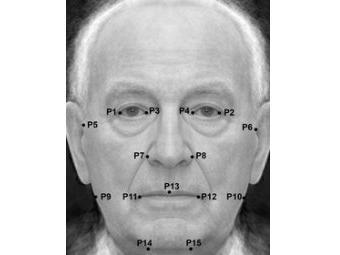 Британские ученые верят, что симметричным людям не грозит маразм