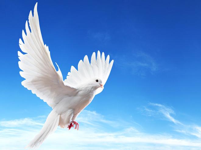 Благовіщення Пресвятої Богородиці 2016: традиції та прикмети свята