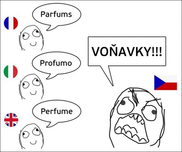 Позитивный чешский язык