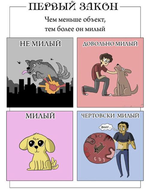 Законы мимишности в картинках