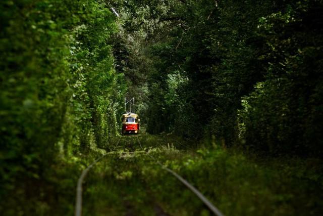 Самый сказочный тоннель Украины
