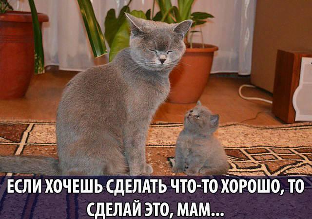 Мамочка, лучше сделай всё сама