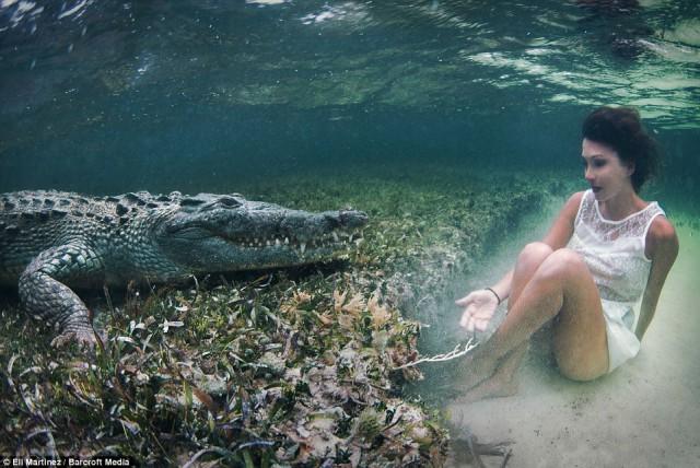 Смелая фотосессия с крокодилом